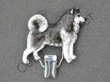 Аляскинский маламут держатель Чехия